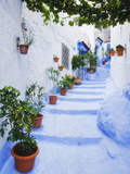Blue Painted Steps With Flower Pots  Chefchaouen  Morocco  North Africa  Africa