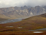 Mountains and Tundra in Fall Color  Denali National Park and Preserve  Alaska  USA