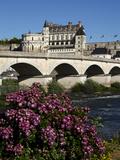 Chateau D'Amboise on the River Loire  Indre-Et-Loire  Loire Valley  France