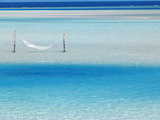 Hammock Hanging in Shallow Clear Water  Maldives  Indian Ocean  Asia