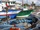 Fishing Boats  Kelibia Harbour  Tunisia  North Africa  Africa