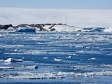 Research Station  Dumont D'Urville  Ile Des Petrels  Antarctica  Polar Regions