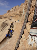 Local Workers Using Donkeys at Hillside Berber Village of Chenini  Tunisia