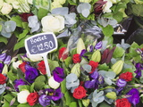 Flowers on Display in the Bloemenmarkt (Flower Market)  Amsterdam  Netherlands  Europe