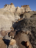 Rock Formation in the Badlands That Looks Like a Castle  Bisti Wilderness  New Mexico  USA
