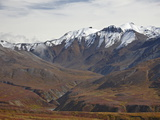 Snow-Capped Mountains and Tundra in Fall Color  Denali National Park and Preserve  Alaska  USA