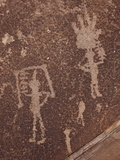 Petroglyphs  Petrified Forest National Park  Arizona  United States of America  North America