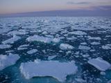 Pack Ice at Midnight  Southern Ocean  Antarctic  Polar Regions