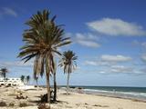 Tourist Zone Beaches on the Mediterranean Coast  Djerba  Tunisia  North Africa  Africa