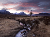 Winter View of Rannoch Moor at Sunset  Near Fort William  Scotland