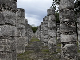 Columns in the Temple of a Thousand Warriors  Chichen Itza  Yucatan  Mexico  North America