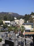 Oscars Billboard  Hollywood Sign  Hollywood  Los Angeles  California