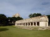 Mayan Ruins of Uxmal  UNESCO World Heritage Site  Yucatan  Mexico  North America