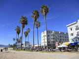 Venice Beach  Los Angeles  California  United States of America  North America