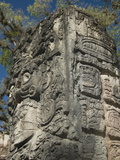Mayan Glyphs on the Side of Stela  Copan Archaeological Park  UNESCO World Heritage Site  Honduras