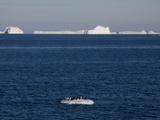 Adelie Penguins (Pygoscelis Adeliae) on Ice Floe  Dumont D'Urville  Antarctica  Polar Regions