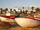 Fishing Boats By the Harbour  Hammamet  Tunisia  North Africa  Africa