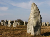 Menec Menhirs in Carnac  Morbihan  Brittany  France  Europe