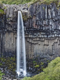 Svartifoss (The Black Falls)  Skaftafell National Park  Iceland  Polar Regions