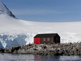Penguin Colony  English Research Station  Port Lockroy  Antarctic Peninsula