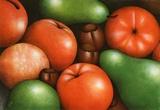 Grüne Birnen / Poires vertes