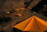 Umbrellas Gelb Nr 13  c1991