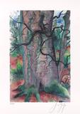 Baum III  c2001