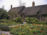 Anne Hathaway's Cottage  Birthplace and Childhood Home of Shakespeare's Future Wife  England