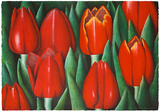 Rote Tulpen