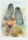 Pilze und Schuhe