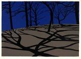 Mondschatten dunkelblau