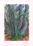 Baum I  c2001