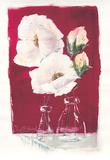 Weiße Blüten auf Rot  c2000