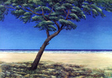 Pinie am Meer Blau  c2000
