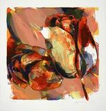 Tulpen Nieuwe Meer  c1998