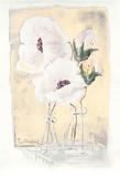 Weiße Blüten auf Gelb  c2000