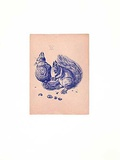 Eichhörnchen Blau/Altrosa