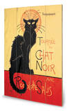 Chat Noir
