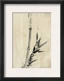 Japan: Bamboo  C1830-1850