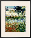 Garden in Bloom  Arles  c1888