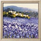 Champs D'Iris, Provence Reproduction encadrée par Hazel Barker