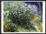 Van Gogh: Lilacs  19Th C