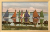 Rainbow Fleet  Nantucket  Massachusetts