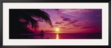 Sunset  Palm Trees  Beach  Water  Ocean  Montego Bay Jamaica