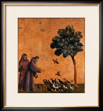 St Francis of Assisi Preaching to the Birds