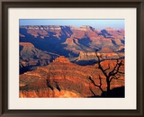 Grand Canyon from South Rim Near Yavapai Point  Grand Canyon National Park  Arizona
