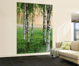 Nordic Forest Huge Wall Mural Art Print Poster