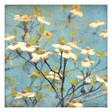 Dogwood I - Blossoming Tree