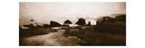 Sepia Island Shores II