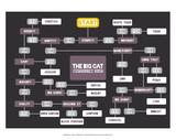 The Big Cat Identification Chart